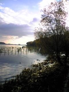 20081229-08.jpg