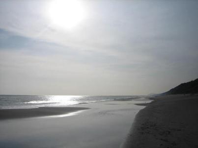20090309-05.jpg