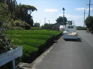 20090518-03.jpg